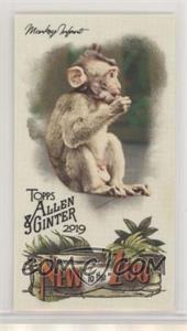 Monkey-Infant.jpg?id=3ec4e28e-f6bd-4322-a7eb-e317c945615c&size=original&side=front&.jpg