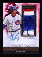 Anthony Rizzo #/5