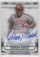 Johnny Bench #/25