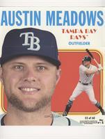 Austin Meadows #/70
