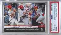 NLDS - St. Louis Cardinals [PSA10GEMMT] #/330
