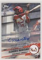 Elehuris Montero #/50