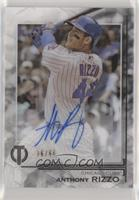 Anthony Rizzo #/60
