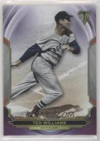 Ted Williams #/299