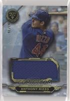 Anthony Rizzo #/36