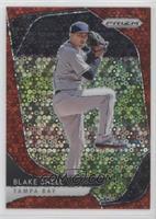 Tier III - Blake Snell #/149