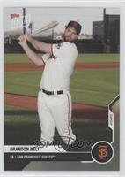 Brandon Belt #/85