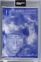 Ted Williams (Don C) [Uncirculated] #/4,693