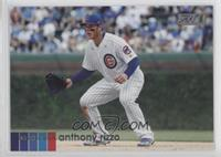 Base - Anthony Rizzo (Fielding)