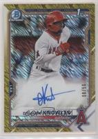 D'Shawn Knowles #/50