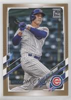 Anthony Rizzo #/2,021