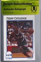 Terry Catledge [BAS Certified BAS Encased]