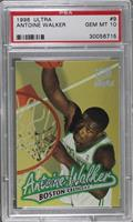 Antoine Walker [PSA 10 GEM MT]