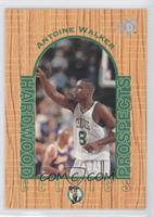 Hardwood Prospects - Antoine Walker