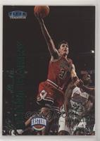 Brent Barry #/20