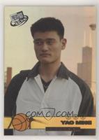 Yao Ming #/500