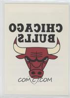 Chicago Bulls Team