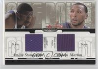 Amare Stoudemire, Shawn Marion /250