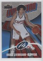2004-05 Rookie - Shaun Livingston