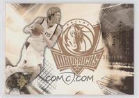 Dirk Nowitzki #/500