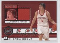 Andrew Bogut #/600