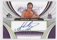 Andrew Bogut #/100