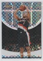 Brandon Roy /249