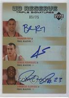 Brandon Roy, Sergio Rodriguez, LaMarcus Aldridge /25