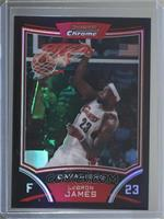 Lebron James #/499