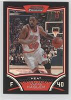 Udonis Haslem #/499