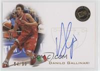 Danilo Gallinari /99