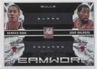 Derrick Rose, John Salmons /25