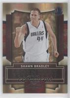 Shawn Bradley /50