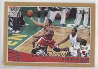 Derrick Rose /2009
