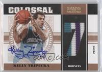 Kelly Tripucka /20