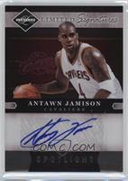 Antawn Jamison #/49