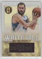 Kevin Love #36/99