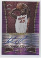 Udonis Haslem #/60