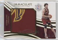 Kevin Love /12