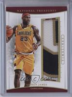 LeBron James #/10