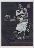 Retired - Shawn Marion /999
