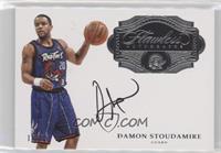 Damon Stoudamire /25