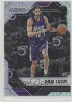 Omri Casspi #/25