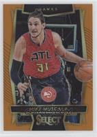 Concourse - Mike Muscala /60