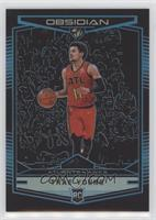Obsidian Preview - Trae Young #/99