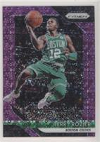 Terry Rozier /75