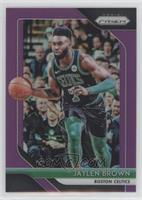 Jaylen Brown #/75