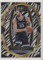 Premier Level - Marc Gasol
