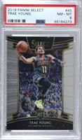 Concourse - Trae Young [PSA8NM‑MT]