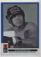 Muhammad Ali [EXtoNM] #/50